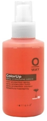 ColorUp Protection Spray